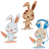 Three characters rabbit Royalty Free Stock Image