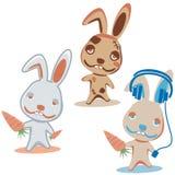 Three characters rabbit Royalty Free Stock Image