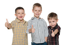 Three cheerful cute boys Stock Photography