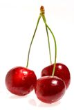 Three cherries. On a white background Royalty Free Stock Photo