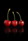 Three cherries Stock Photography