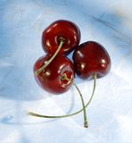 Three Cherries Royalty Free Stock Photo