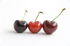 Three cherries. Of different color in a row on white background Royalty Free Stock Image