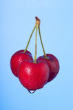 Three cherries Stock Photos
