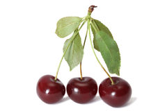 Three cherries Royalty Free Stock Images