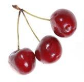 Three Cherries stock photos