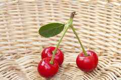 Three Cherries in a Basket Royalty Free Stock Images