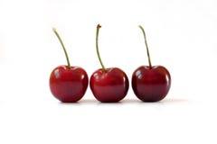 Three cherries stock image