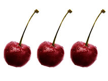 Three Cherries isolated  Royalty Free Stock Photos