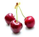 Three cherries isolated Stock Photos