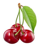 Three cherries isolated on white Royalty Free Stock Images