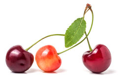 Three cherries with leaf closeup isolated on white background Royalty Free Stock Photos