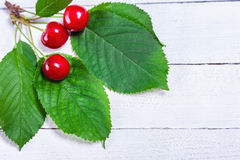 Three Cherries On White Boards Royalty Free Stock Image