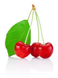 Three Cherry with stem and a leaf isolated on white Royalty Free Stock Photography
