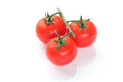 Three cherry tomatoes on green branch Stock Images