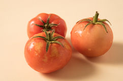 Three cherry tomatoes. Isolated on cream colored background. Stock Image