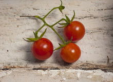 Three Cherry Tomatoes Royalty Free Stock Photography
