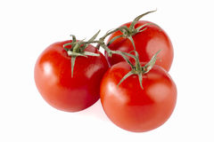 Three cherry tomatoes Royalty Free Stock Images