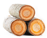 Three cherry tree round stub logs Stock Images