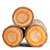 Three cherry tree round stub logs Royalty Free Stock Images