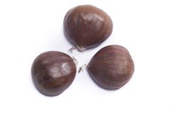Three chestnuts Stock Photo