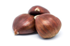 Three chestnuts Royalty Free Stock Image