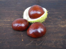 Three chestnuts Royalty Free Stock Photo