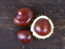 Three chestnuts. On wooden background royalty free stock photography