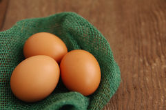 Three chicken brown eggs in a nest of green color from fabric Royalty Free Stock Images