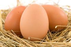 Three chicken eggs Royalty Free Stock Photos