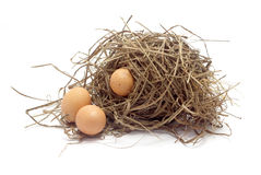 Three chicken eggs in the bird nest on white background Royalty Free Stock Photography