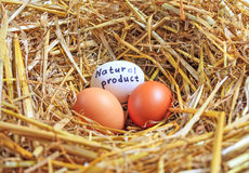 Three chicken eggs natural product Stock Photos