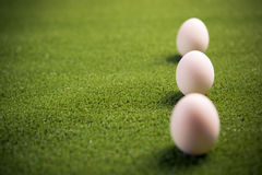 Three Chicken Eggs On The Lawn Stock Image