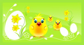 Three chickens on easter background Stock Photos