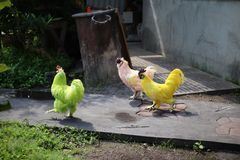 Three chickens are friends. But different colors, green, white, yellow, love in different colors stock photo
