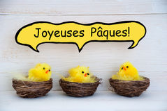 Three Chicks With Comic Speech Balloon French Joyeuses Paques Means Happy Easter Stock Images