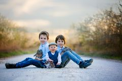 Three children, boy brothers in park, playing with little bunnies stock photos