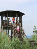 Three children descend from the observatory tower of a natural r. Eserve Stock Images