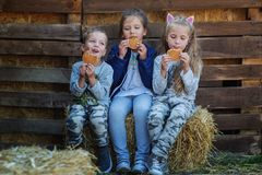 Three children eat in the countryside stock images