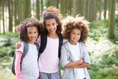 Three Children Exploring Woods Together Stock Image