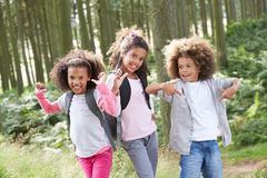 Three Children Exploring Woods Together Royalty Free Stock Image