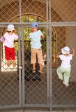 Three children hang on grill of gate Royalty Free Stock Image