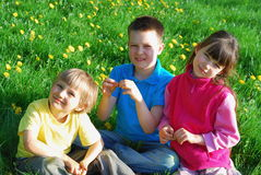 Three Children in Meadow Stock Photo