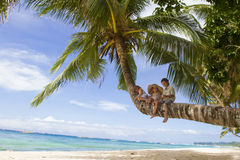 Three children on palm tree Royalty Free Stock Photography