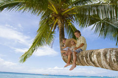 Three children on palm tree Stock Photo