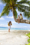 Three children on palm tree Royalty Free Stock Photos
