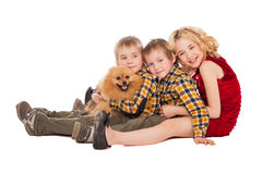 Three children playing with little dog sitting on white backgrou Royalty Free Stock Images