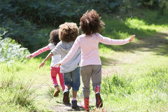 Three Children Playing In Woods Together stock photo