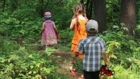 Three children walk in summer green forest, back view stock video footage
