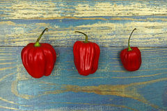 Three chili peppers on old wood background Royalty Free Stock Image